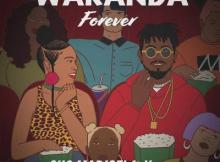 MP3 : Sho Madjozi - Wakanda Forever Ft. Ycee