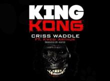 MP3 : Criss Waddle - King Kong ft. Kwesi Arthur (Prod. Kayso)
