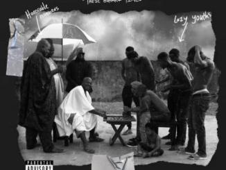 FULL ALBUM: Show Dem Camp - These Buhari Times (Clone Wars Vol. IV)