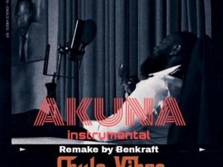 INSTRUMENTAL: Timaya - Akuna (Remake Benkraft)