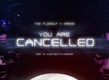 VIDEO: The Flowolf X Dremo - You Are Cancelled