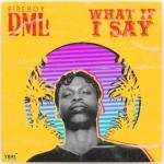 Instrumental: Fireboy DML - What If I Say (Remake Ace Soundz)
