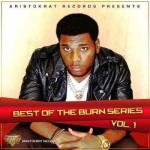 MP3: Burna Boy - I Don't Care