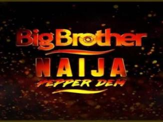 Meet The 21 Big Brother Naija Housemates