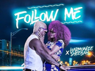 MP3: Harmonize Ft. Sheebah – Follow Me