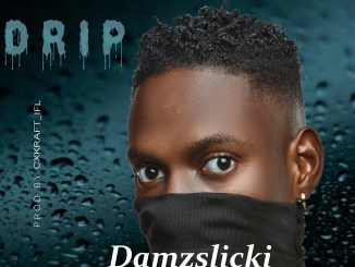 MP3: Damzslicki - Drip (Prod. By Cxkraft_Ifl)