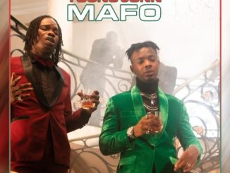 Lyrics: Naira Marley x Young John - Mafo