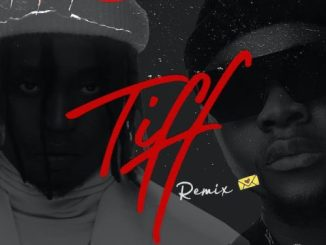 Lyrics: Demmie Vee x Kizz Daniel - Tiff (Remix) Lyrics
