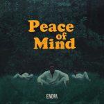 MP3: Endia - Tender Ft. Moelogo