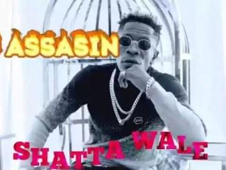 MP3: Shatta Wale - SM Assasin