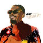 MP3: Ycee - Wahala Dey