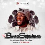 DJ Teeyrych - The Burna Experience (Burna Boy Mixtape)