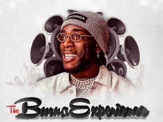 DJ Teeyrych - The Burna Experience (Burna Boy Mixtape)