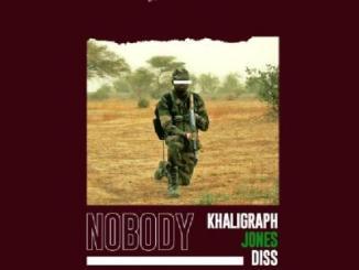 MP3: Payper Corleone - Nobody (Khaligraph Jones Diss)