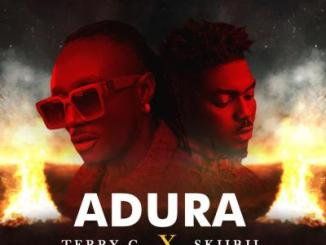 Lyrics: Terry G - Adura Ft. Skibii
