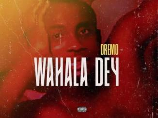 MP3: Dremo - Wahala Dey