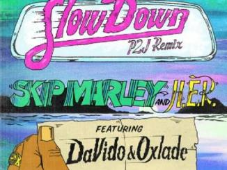 MP3: Skip Marley ft. Davido, Oxlade, H.E.R - Slow Down (Remix)