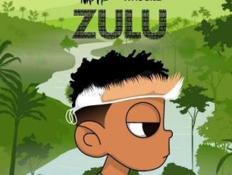 Nasty C, DJ Whoo Kid - Zulu Mixtape