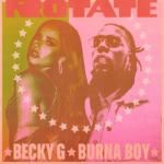 Lyrics: Becky G x Burna Boy - Rotate Lyrics