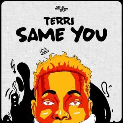 MP3: Terri - Same You