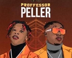Seyi Vibez Ft. Zlatan - Professor Peller