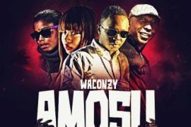 MP3 : Waconzy ft. Rhage, Heyden Adama & Shadow Boxxer - Amosu (Remix)