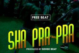 Freebeat With Hook : Shaprapra (Prod By Sensebeat)
