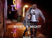MP3 : DJ Dimplez - What A Night ft. Kwesta & Tellaman