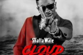 MP3 : Shatta Wale - Never Plan For This