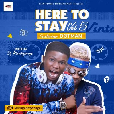 Mixtape: DJplentysongz - Here to Stay Vol. 5 mix
