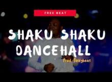 Free Beat: Shaku Shaku Dancehall (Prod. Fizzybeat)
