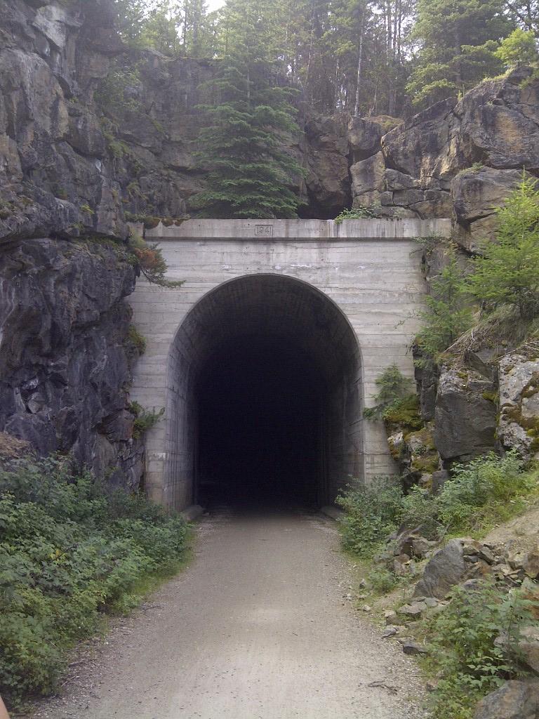 Songdove Books - Train Tunnel