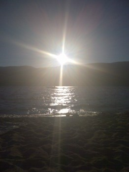 Songdove Books - Summer Evening Sun