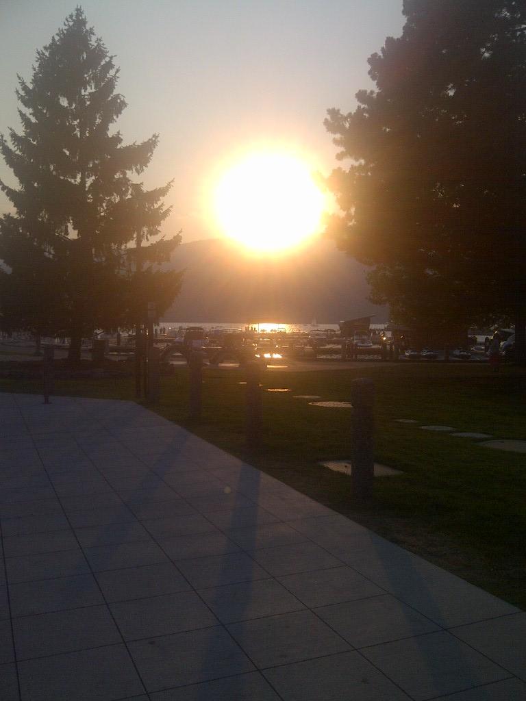Songdove Books - Setting Sun