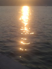 Songdove Books - Setting Sun reflected on water