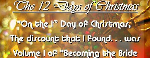 """On the First Day of Christmas"" Day One of Christmas Discount Tour"