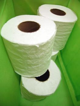 Songdove Books - Toilet Paper