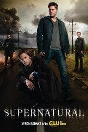 supernatural poster season8