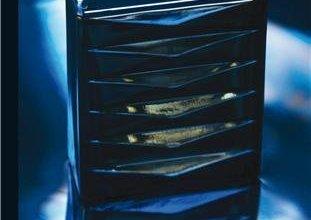 Photo de La Suite De La Trilogie Stark de Julie Kenner : Possède-Moi