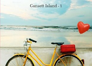 Photo of Gansett Island Tome 1 : Cadeau d'amour