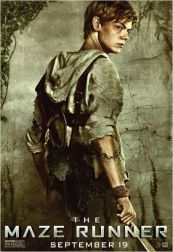 Le labyrinthe - Newt