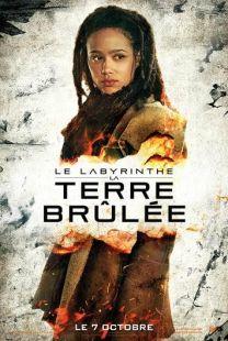 Le Labyrinthe -La Terre Brûlée4