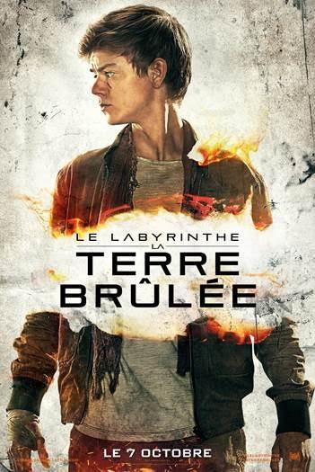 Le Labyrinthe -La Terre Brûlée6
