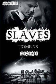 slaves tome 3.5 decease amheliie