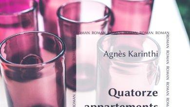 Photo de Quatorze appartements d'Agnès Karinthi