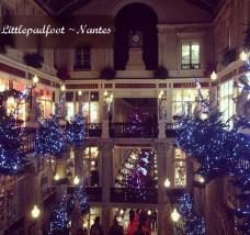 Littlepadfoot Nantes