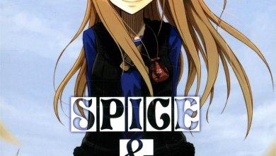 Photo of Spice & Wolf de Isuna Hasekura