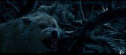 capture-ba-la-belle-et-la-bete-2017-loups