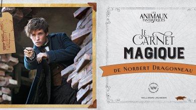 Photo de Le Carnet Magique de Norbert Dragonneau [Idée Cadeau #1]