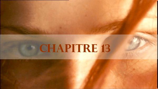 chapitre-13